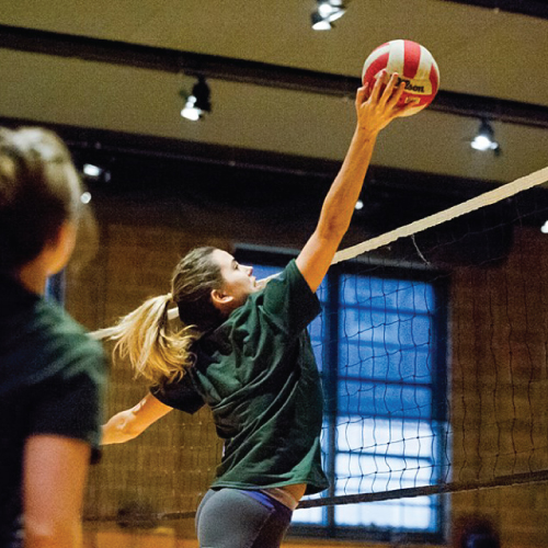 Coed Social Volleyball Leagues